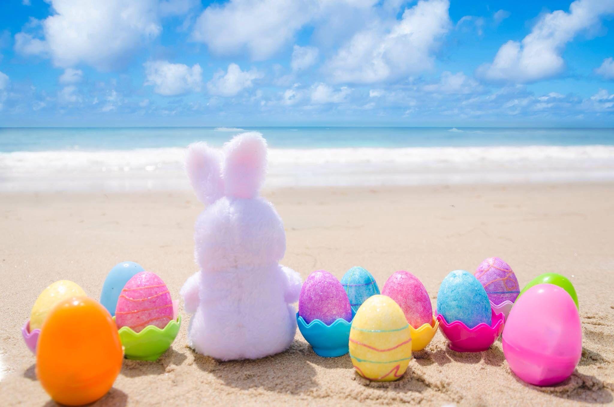 Easter activities in Croyde Beach